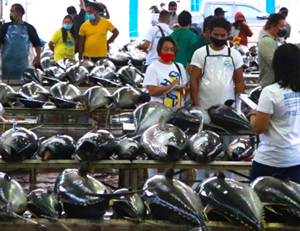 PFDA records high unloading volume amid monsoon season